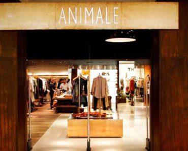 Animale Store loja online Brasil
